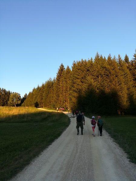 Wilde Räuber