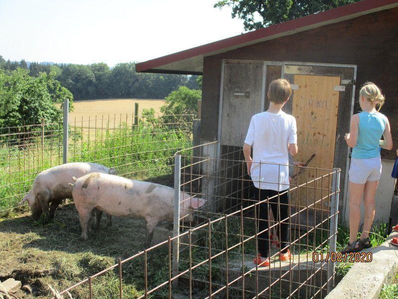 Zeltferien auf dem Bauernhof